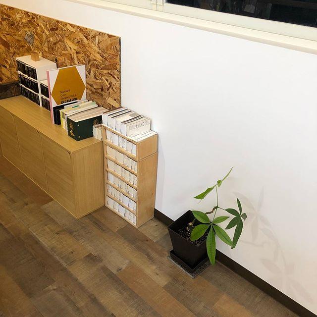 もっと大きくなーれ♡#パキラ #見本帳 #特殊紙 #観葉植物 #製本 #紙加工